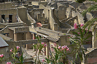 The ruins of Herculaneum were unearthed in the early 18th century by workmen who were digging a foundation for a well. Located at the northwestern foot of Vesuvius, it was destroyed, together with Pompeii and Stabiae, by the eruption of ad 79.