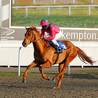 Kickingthelilly and Chris Catlin winning the 3.00 race