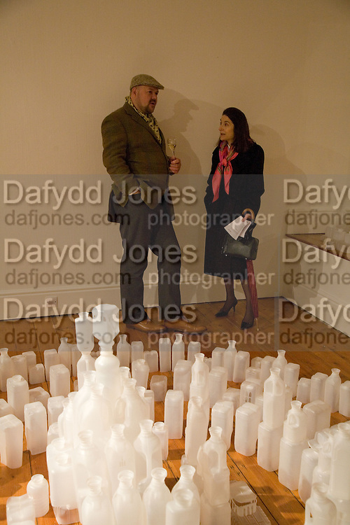 Paul Hedge; Heather Maizels, Private view: Atlantis by Gayle Chong Kwan, Hosted by Pia Getty, Isabella Macpherson & Sigrid Wilkinson . 29 Thurloe Place, SW7. London. 11 Nov emebr 2008<br />