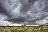 Approaching storm - Anza-Borrego Desert, State Park, Arizona.