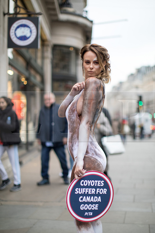 © Licensed to London News Pictures. 29/11/2017. London, UK. Glamour model Rhian Sugden demonstrates outside the Canada Goose Regent Street store on behalf of PETA, with her body painted as a Coyote. PETA are campaigning against the trapping and killing of coyotes for fur-trimmed coats sold by Canada Goose. Photo credit : Tom Nicholson/LNP