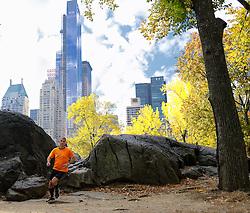 02-11-2013 ALGEMEEN: BVDGF NY MARATHON: NEW YORK <br /> Parcours verkenning en laatste training in het Central Park / Harold<br /> ©2013-FotoHoogendoorn.nl
