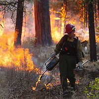 ORIG./Ryan Brennecke/The Bulletin/04-23-10..Teri Cairns lights a fire line while working on the McCache prescribed burn located one mile west of Cold Springs Campground in Sisters Friday afternoon. The burn was implemented to reduce hazardous fuels and promote forest health by reintroducing fire to a historically fire-adapted landscape.