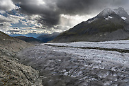 The glacier Grosser Aletschgletscher, view downstream towards the Valais alps, Valais, Switzerland