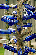 Bottle Tree, MS