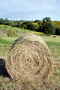 round hay bale in hilly landscape France Aude