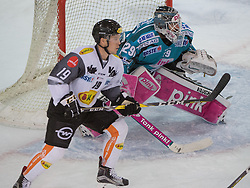 01.12.2016, Keine Sorgen Eisarena, Linz, AUT, EBEL, EHC Liwest Black Wings Linz vs Dornbirner Eishockey Club, 25. Runde, im Bild Tormann Michael Ouzas (EHC Liwest Black Wings Linz) und Dustin Sylvester (Dornbirner Eishockey Club) // during the Erste Bank Icehockey League 25th round match between EHC Liwest Black Wings Linz and Dornbirner Eishockey Club at the Keine Sorgen Icearena, Linz, Austria on 2016/12/01. EXPA Pictures © 2016, PhotoCredit: EXPA/ Reinhard Eisenbauer
