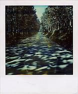 Sunlight filters through trees lining a long straight road creating shadow patterns, Laos, Southeast Asia