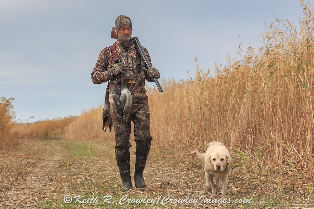Successful waterfowl hunter walks with his dog.