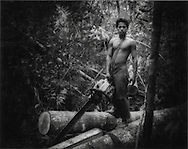 Death Throes of a Great Rainforest - Illegal logger inside  Gunung Palung Nat?l Park, West Kalimantan (Borneo), Indonesia.  Gunung Palung Nat'l Forest is one of the last protected refuges for orang utans.  This young illegal logger has been lent a chain saw for the merchant in town who sells the timber.  Illegal loggers have penetrated deep.into the park.   On a five hour hike, one way, into an orang utan research center within the park, four hours of the hike were through illegally logged forest.