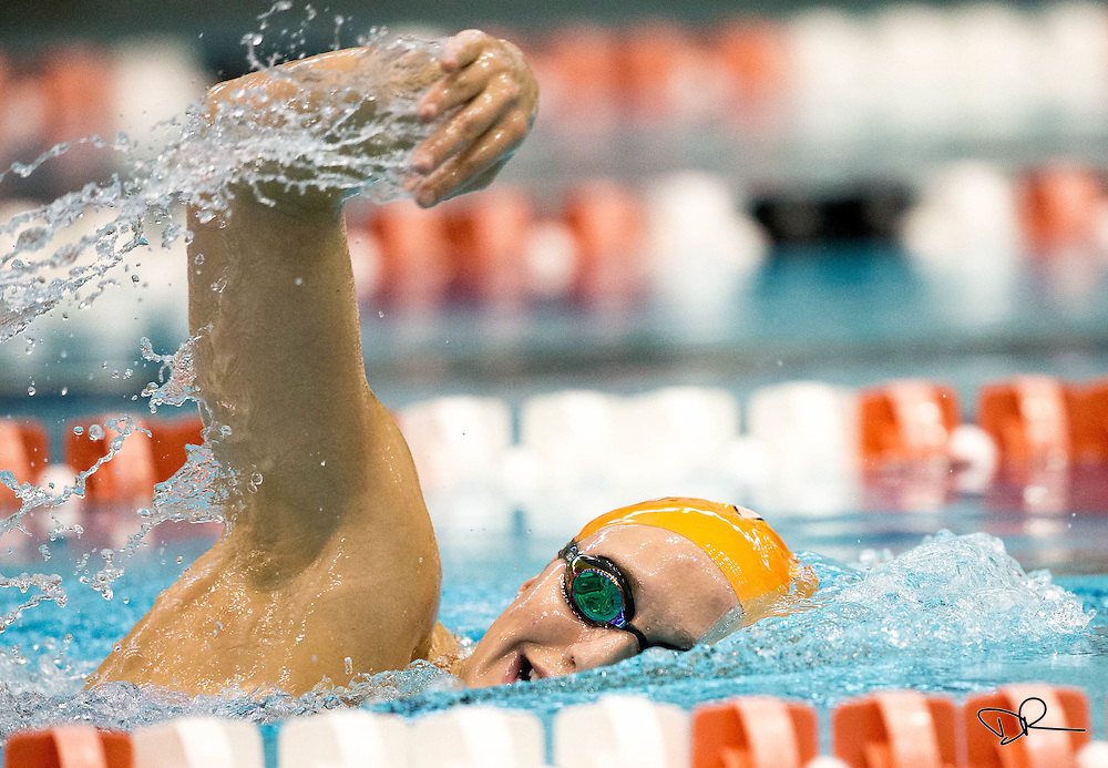 University of Tennessee swimmer Meg Wiggins works the freestyle stroke during a team practice at the UT Aquatic Center.
