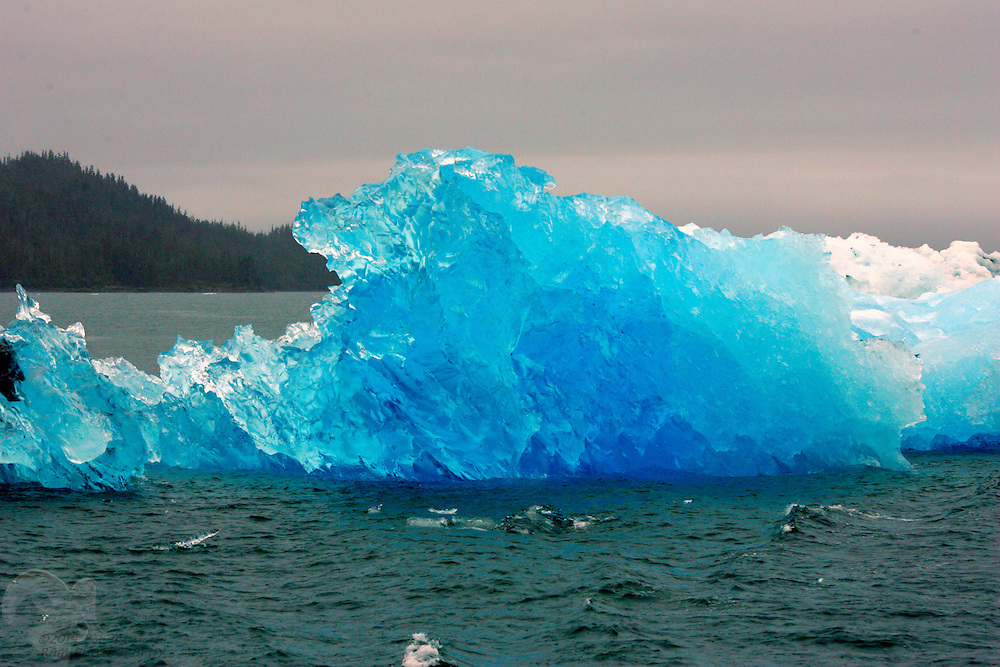 Icy blue color is displayed in this iceberg freshly calved off of Columbia Glacier in Prince William Sound, Alaska.