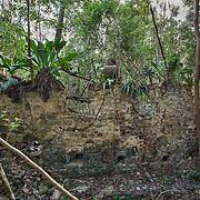 Rustenberg Ruins, St John, USVI