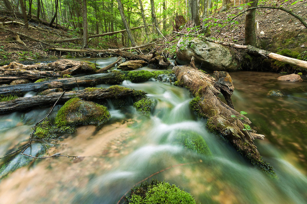Cascade Creek,<br />