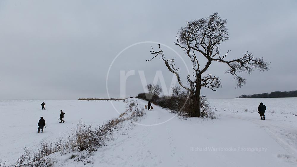 Favourite Pheasant Shoots - Richard Washbrooke Photography