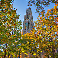 New England fall foliage framing the iconic Harkness Tower at Yale University in New Haven, Connecticut. <br /> <br /> Connecticut architecture photography images are available as museum quality photography prints, canvas prints, acrylic prints or metal prints. Prints may be framed and matted to the individual liking and decorating needs at:<br /> <br /> https://juergen-roth.pixels.com/featured/yale-university-harkness-tower-juergen-roth.html<br /> <br /> All high resolution Connecticut photography images are available for photo image licensing at www.RothGalleries.com. Please contact me direct with any questions or request. <br /> <br /> Good light and happy photo making!<br /> <br /> My best,<br /> <br /> Juergen<br /> Prints: http://www.rothgalleries.com<br /> Photo Blog: http://whereintheworldisjuergen.blogspot.com<br /> Instagram: https://www.instagram.com/rothgalleries<br /> Twitter: https://twitter.com/naturefineart<br /> Facebook: https://www.facebook.com/naturefineart