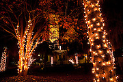 Fairy lights decorate trees around Marion Square fountain in Marion Square Charleston, SC. The steeple of the Citadel Square Baptist Church is in the background. (photo by Charleston SC photographer Richard Ellis)