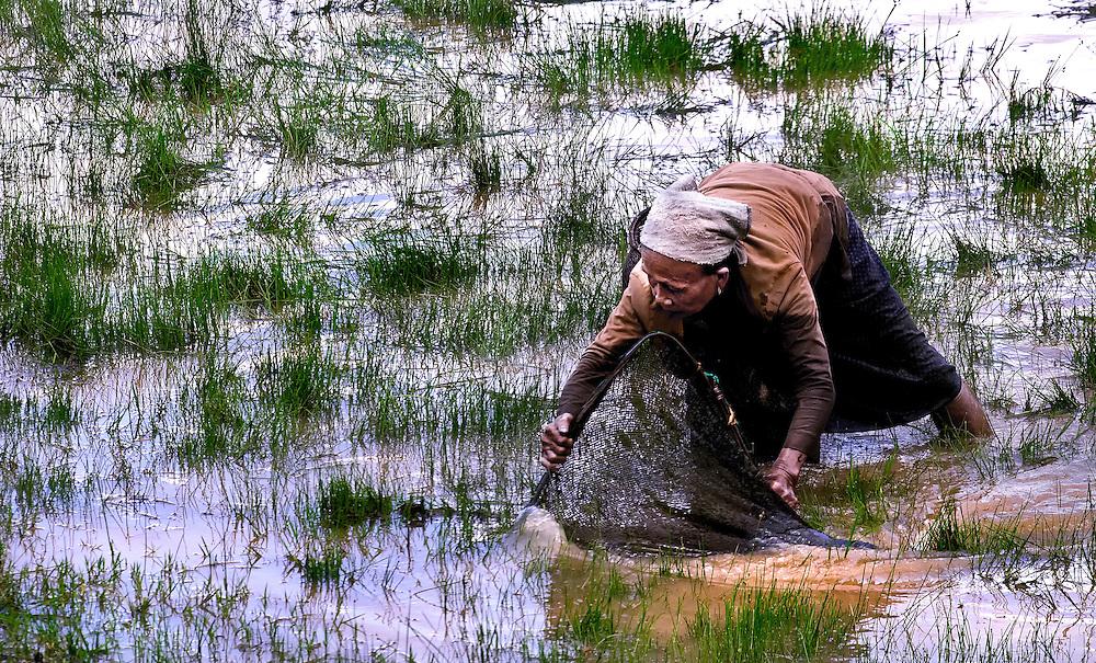 An old woman fishing for tadpoles at Tham Lot Khong Lo, Laos.