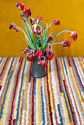 dying tulips in a pot on a bright striped carpet