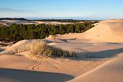 Sand dunes at Umpua Dunes area of Oregon Dunes National Recreation Area, Oregon Coast.