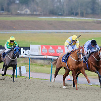 Lingfield 10th February