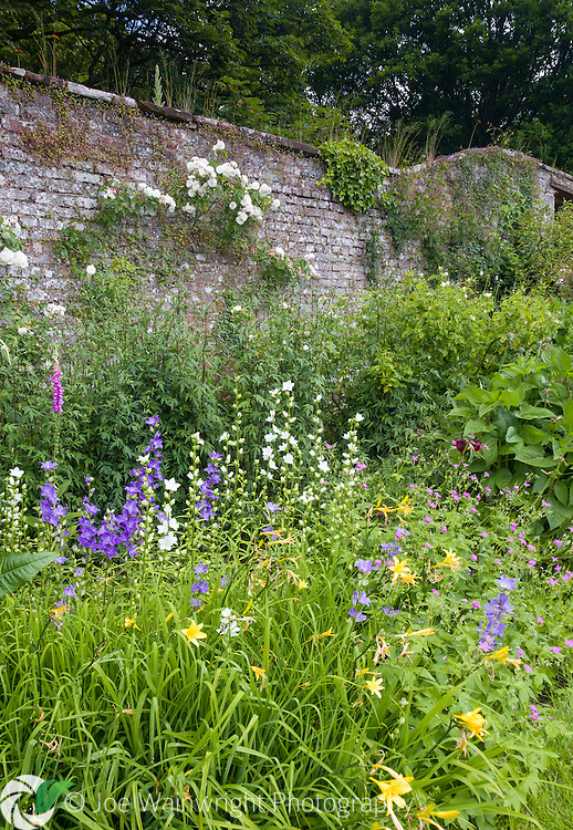 A colourful herbaceous border at Acorn Bank, Cumbria - photographed in June