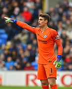 Kepa Arrizabalaga (1) of Chelsea during the Premier League match between Cardiff City and Chelsea at the Cardiff City Stadium, Cardiff, Wales on 31 March 2019.