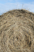 extreme close up of a roll of hay