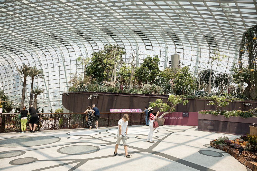 Singapore, Gardens by the Bay, Flower Dome,