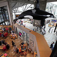 A general overview of the Monterey Bay Aquarium, which is located on Cannery Row in Monterey, California, on Friday July 13, 2012.(AP Photo/Alex Menendez)