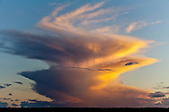 Summer Monsoon dissipating over the South Kaibab forest near the Grand Canyon