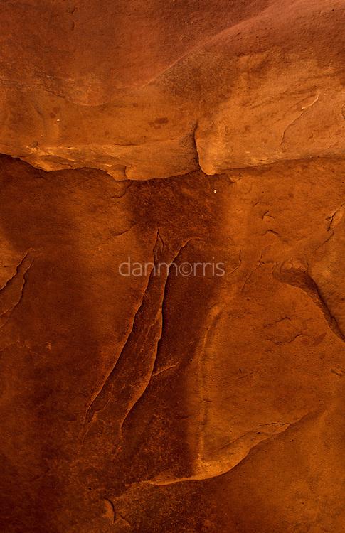 Cayote GulchNavajo sandstone still-life, Cayote Gulch, Escalante National Monument, Utah