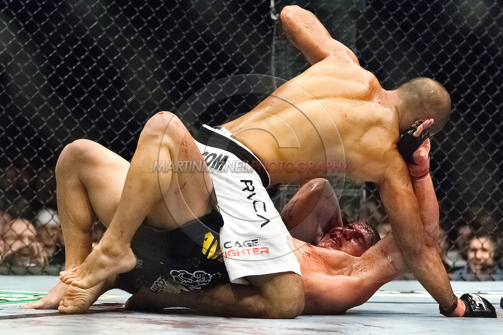 "NEWCASTLE, ENGLAND, UNITED KINGDOM, JANUARY 19 2008: BJ Penn (top) rains down blows on Joe Stevenson during ""UFC 80: Rapid Fire"" inside the Metro Radio Arena in Newcastle, England on January 19, 2008."