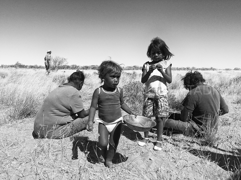 In the tradition of hunting and gathering Elaine and Kingsley together with their daughter Marjorie and grandson Quane looking for bush onions. The very small onions<br /> are found buried deep in the sand. They are collected<br /> for roasting. The Wangatjunka community, Western<br /> Australia.