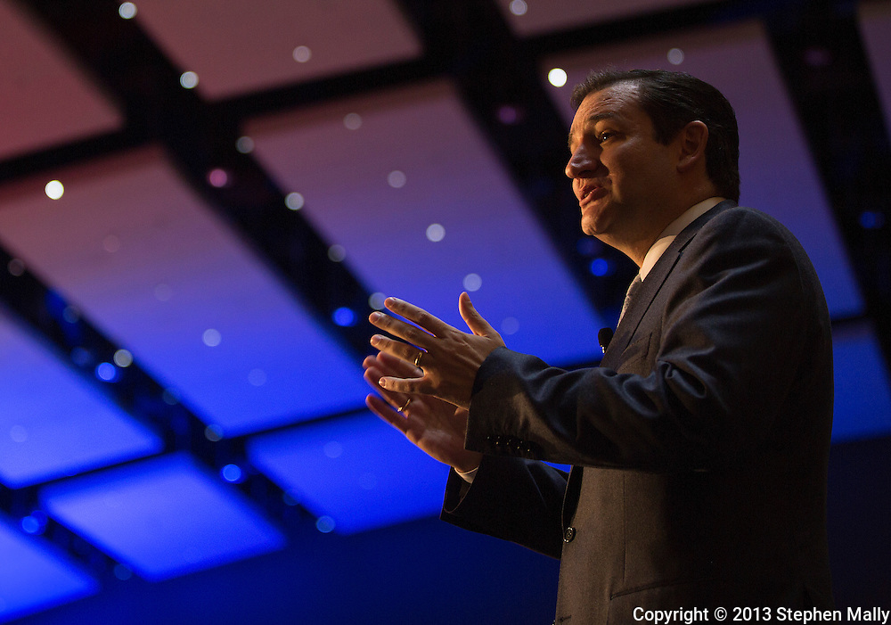 DES MOINES, IA - OCTOBER 25, 2013: Senator Ted Cruz, Republican of Texas, speaks at the Iowa GOP Ronald Reagan Dinner at the Iowa Events Center - Community Choice Credit Union Convention Center in Des Moines, Iowa.