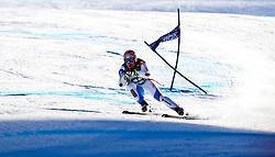 05.02.2011, Hannes-Trinkl-Strecke, Hinterstoder, AUT, FIS World Cup Ski Alpin, Men, Hinterstoder, Super-G, im Bild Didier CUCHE (SUI) // Didier CUCHE (SUI) during FIS World Cup Ski Alpin, Men, Super-G in Hinterstoder, Austria, February 05, 2011, EXPA Pictures © 2011, PhotoCredit: EXPA/ J. Feichter