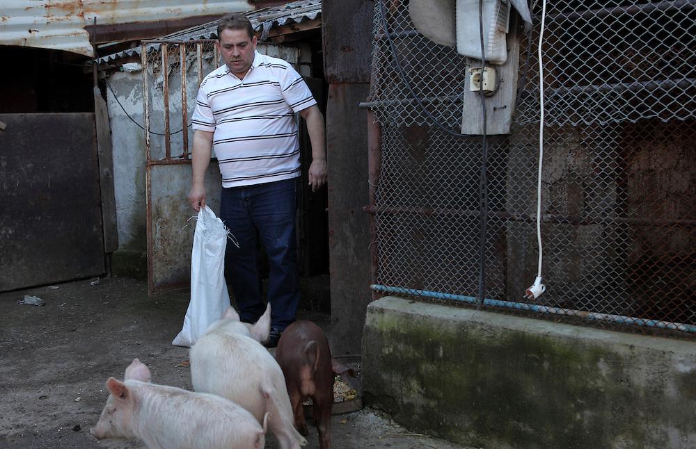 Romania, Tirgu Jiu - Ninel Potirca, one of the wealthiest ROMa people in Romania.