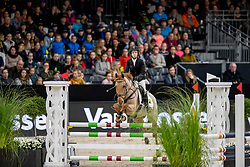 Clercx Kobe, BEL, Pakko<br /> JIM Maastricht 2019<br /> Limmy Middag Euregio Jumping Ponies<br /> © Hippo Foto - Dirk Caremans<br />  09/11/2019