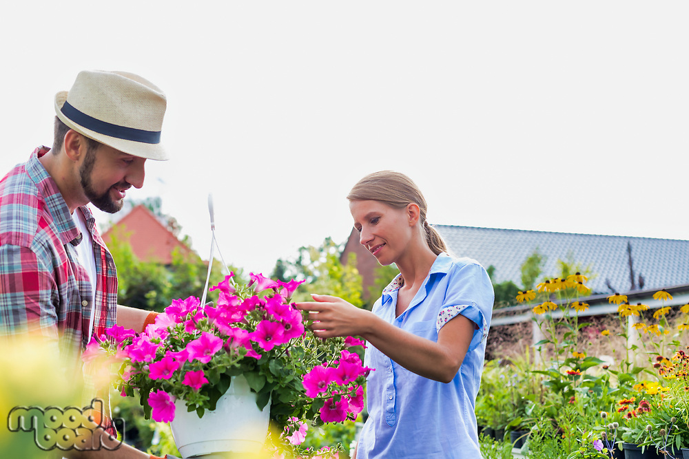 Mature gardener showing flowers on pot to woman buyer in shop