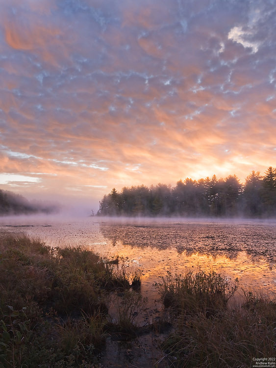 Glorious autumn / fall sunrise over Mew Lake, Algonquin Provincial Park.  This is 3 shot vertically stitched panorama.