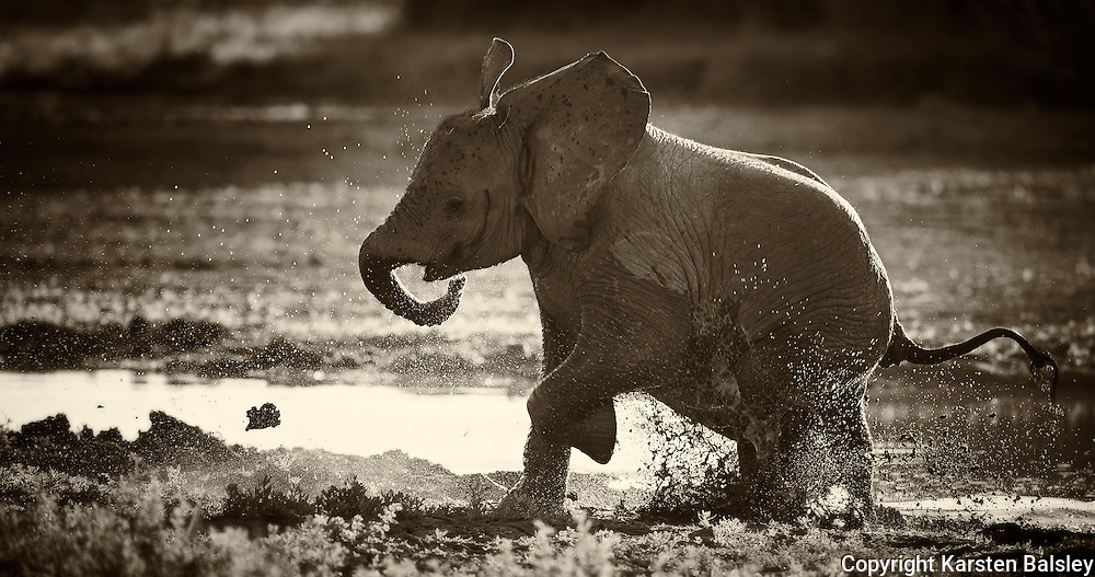 &ldquo;Puddles&rdquo;                                                       Tanzania<br />  One puddle, one kid, one constant. Splash!