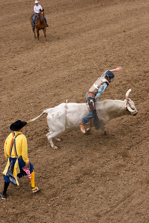 A rodeo clown watches over a bull rider.