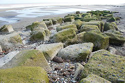 Concrete sea defences at Tunstall; East Yorkshire; England