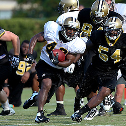 August 6, 2011; Metairie, LA, USA; New Orleans Saints running back Darren Sproles (43) breaks away from Ramon Humber (54) and Cameron Jordan (94)during training camp practice at the New Orleans Saints practice facility. Mandatory Credit: Derick E. Hingle