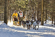 March 7th, 2009:  Anchorage, Alaska - Jeff King of Denali, Alaska rides behind his team on skis through the woods near Behm Lake during the start of the 2009 Iditarod.