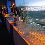 Inauguration de la salle des lumières de l'aquarium de La Rochelle / 01/04/2016