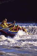 Alaska. Denali NP. Nenana River. Rafters enjoy the icy waters of this rushing river.