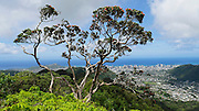 Wa'ahila Ridge, St Louis Heights, Honolulu, Oahu, Hawaii