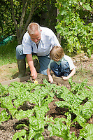 Boy gardening with grandfather