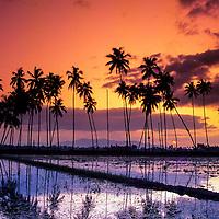 sunset at rural, Malaysia